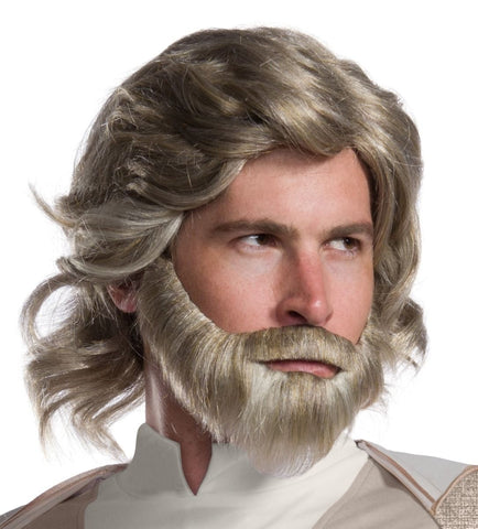 Adult Star Wars Luke Skywalker Wig & Beard Set