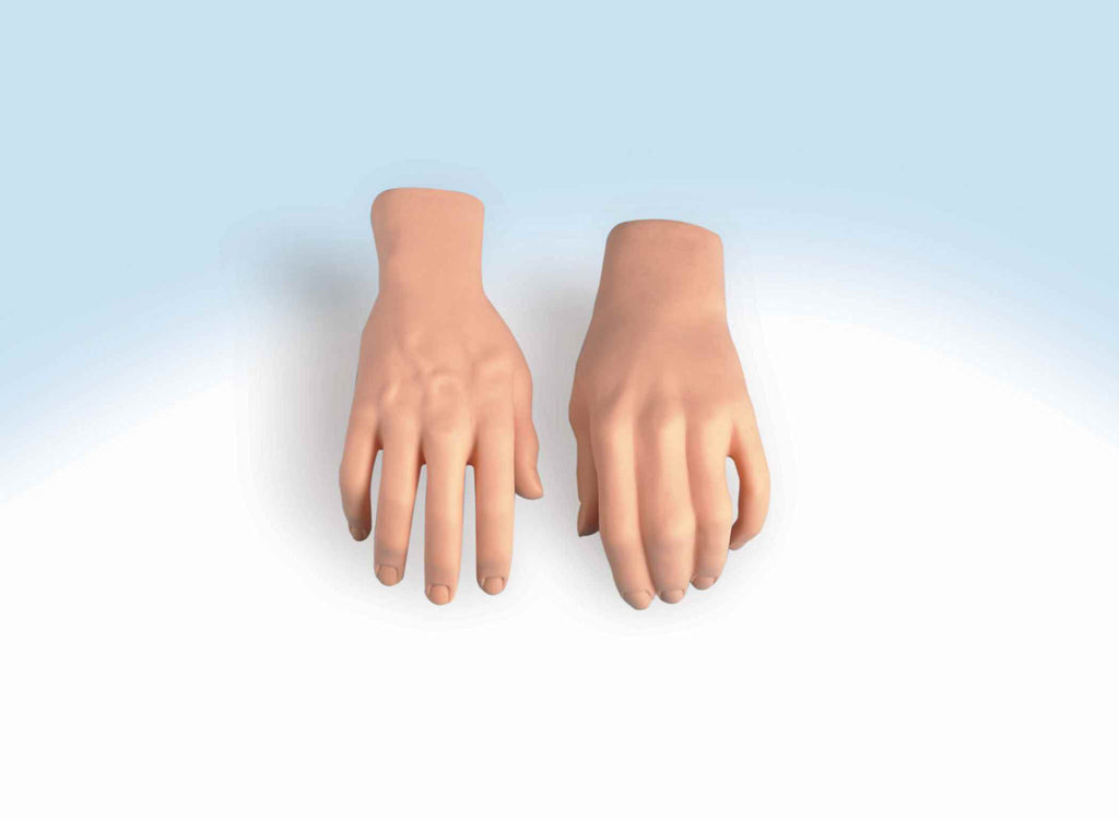 Horror Props Stage Hands Prop - HalloweenCostumes4U.com - Decorations