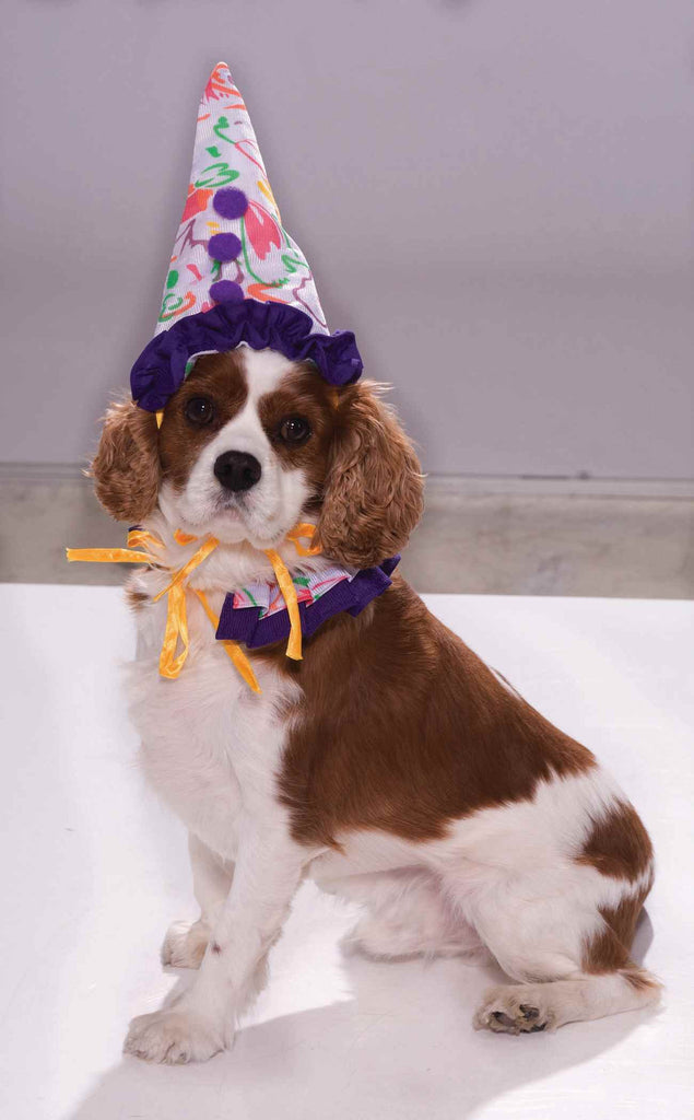 Clown Halloween Costumes for Pets - HalloweenCostumes4U.com - Pet Costumes & Accessories