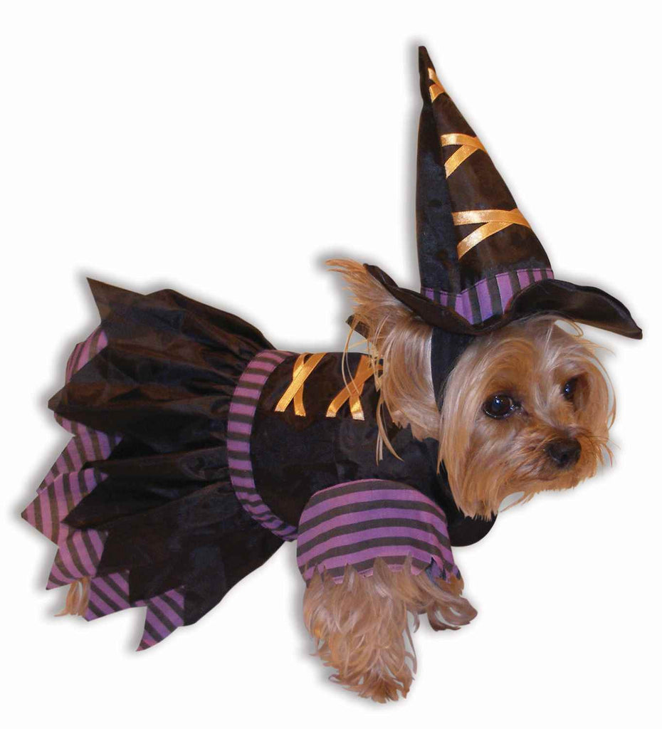 Witch Halloween Costumes for Pets Dogs or Cats