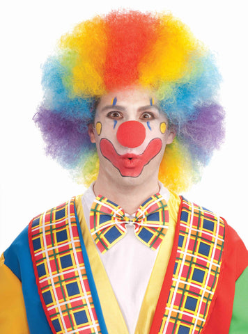 Deluxe Clown Wig Multi-Color Clown Afro - HalloweenCostumes4U.com - Accessories