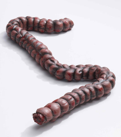 Bloody Intestines Prop - HalloweenCostumes4U.com - Decorations