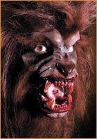 Reel F/X Werewolf Prosthetic - HalloweenCostumes4U.com - Accessories