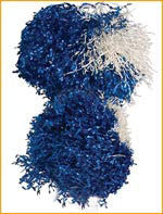 Dallas Cowboy Cheerleader Pom Poms - HalloweenCostumes4U.com - Accessories