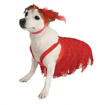 Pets Flapper Costume - HalloweenCostumes4U.com - Pet Costumes & Accessories