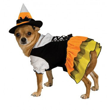 Pets Candy Corn Witch Costume - HalloweenCostumes4U.com - Pet Costumes & Accessories