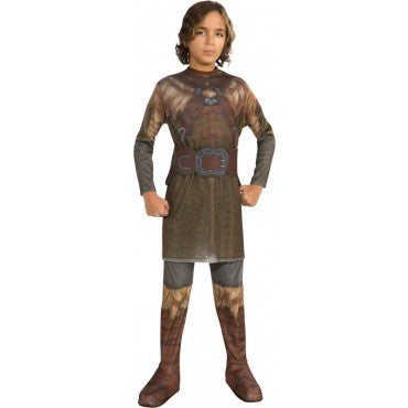Boys The Hobbit Dwalin Costume - HalloweenCostumes4U.com - Kids Costumes