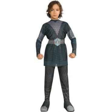 Boys The Hobbit Thorin Costume - HalloweenCostumes4U.com - Kids Costumes