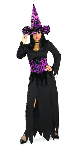 Womens Elegant Witch Costume - HalloweenCostumes4U.com - Adult Costumes