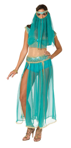 Womens Harem Princess Costume - HalloweenCostumes4U.com - Adult Costumes