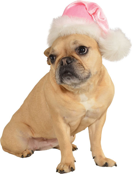 Pets Christmas Santa Hat - Various Colors