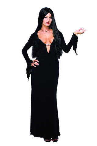 Womens/Teens Morticia Addams Costume - HalloweenCostumes4U.com - Adult Costumes