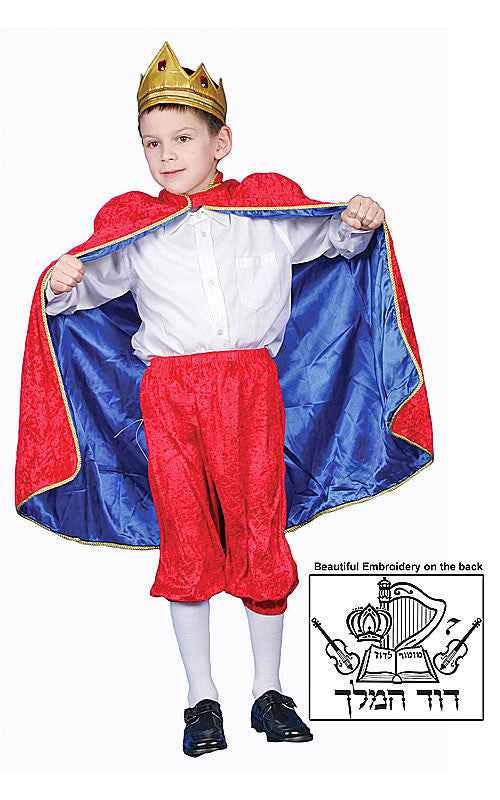 Boys King David Costume - HalloweenCostumes4U.com - Kids Costumes