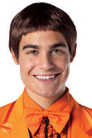 Lloyd Dumb and Dumber Wig - HalloweenCostumes4U.com - Accessories