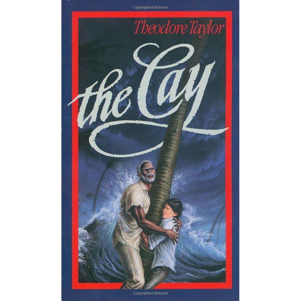 The Cay Paperback
