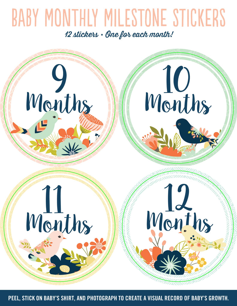 Baby Monthly Milestone Stickers Birds
