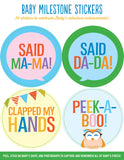 Baby Monthly Milestone Stickers