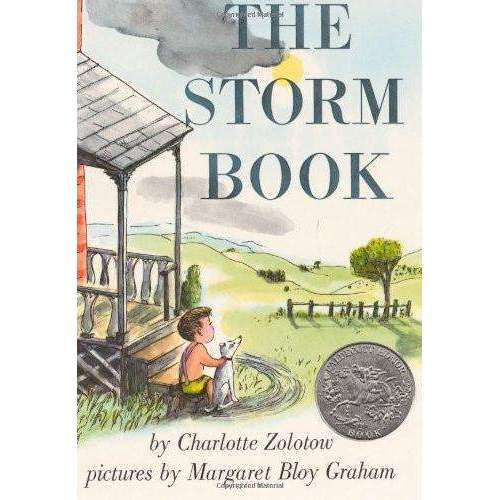 The Storm Book Paperback by Charlotte Zolotow