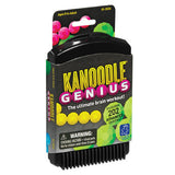 Kanoodle Genius - Why-Games