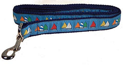 Light Blue Rainbow Fleet Dog Collar and Leash