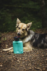 Dog Mug Growler Leak Tight