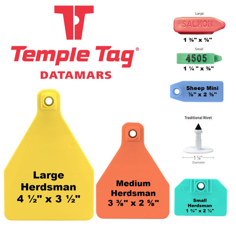Temple Tag Ear Tags