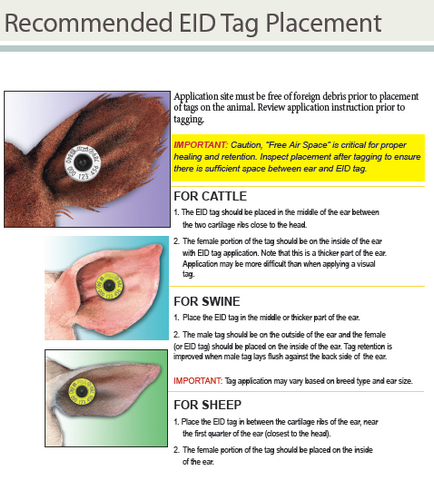 eid placement instructions