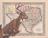 CCK sells TPWD Whitetail Deer ID