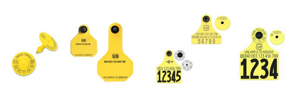 CCK sells all usda official 840 ear tags