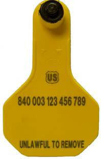 Ytex 840 Usda Official Visual Small Blank Tag With Button sold by CCK Outfitters