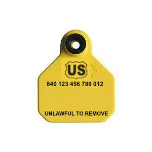 YTex 840 USDA Visual Mini Blank Ear Tag with Button