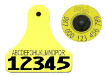 Allflex 982 FDX Standard Performance Full Duplex EID Ear Tag with Numbered Junior Tag set