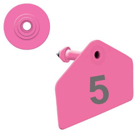 ALLFLEX Hog Numbered 1 Side Ear Tag with Blank Round