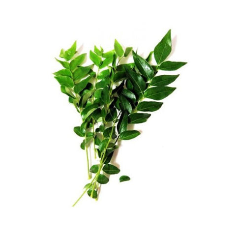 Curry Leaf (Single Bunch) Approx 15 gm - SabAdda - Asian Grocery Store