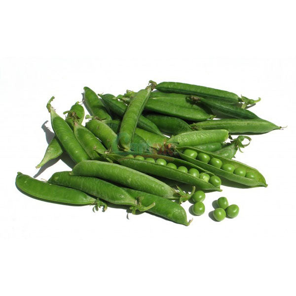 Pakistani Peas 500 gm - Sabadda - Indian Online Grocery Store in UK