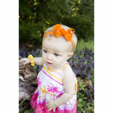 Interchangeable 10 Piece Bow and Headband Set