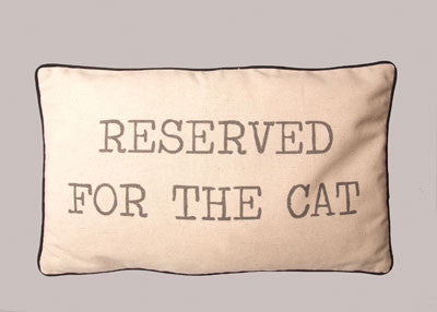 Reserved For the Cat Cushion - meow meow