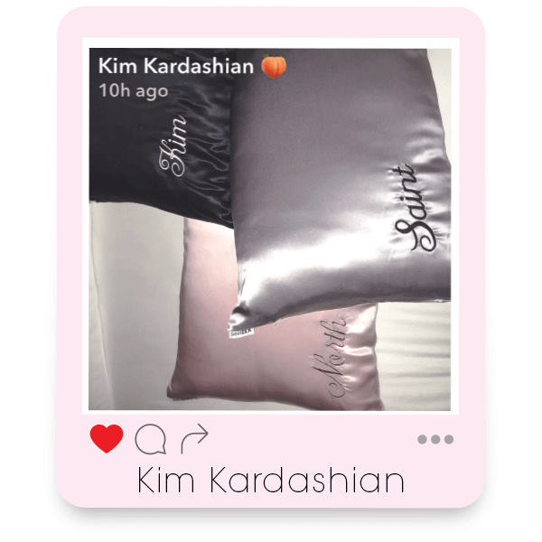 Kim Kardashian Silk Travel Pillow