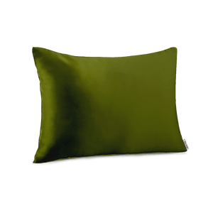Sage Travel Pillow