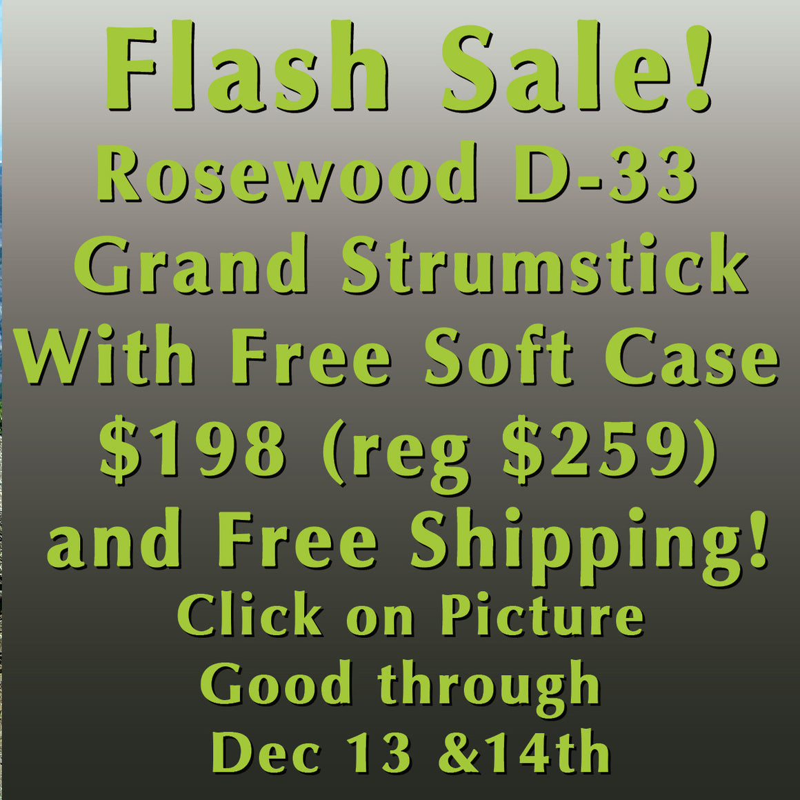 Rosewood D-33 Flash Sale