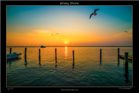 Jersey Shore .. Homeward Bound, Sunrise, Sunset, Bird, Boat, Orange, Red, yellow, Ocean, Water, , Beach, Pier, wharf