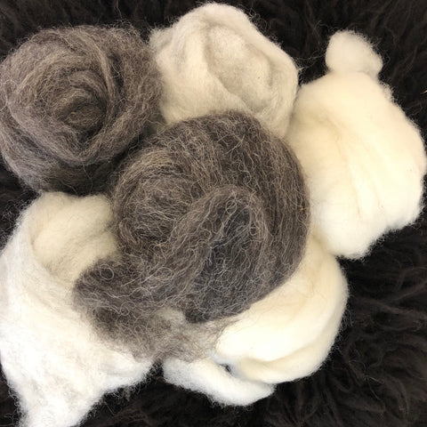 Intrepid Otter Farm Shetland roving for spinning and felting, 2 ounces