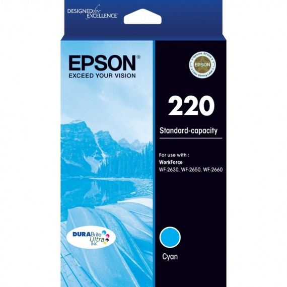 Epson 252 Cyan Ink Cartridge - Out Of Ink