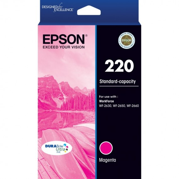 Epson 252 HY Cyan Ink Cart - Out Of Ink