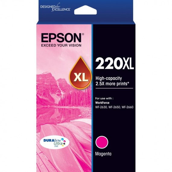 Epson 252 EHY Black Ink Cart - Out Of Ink