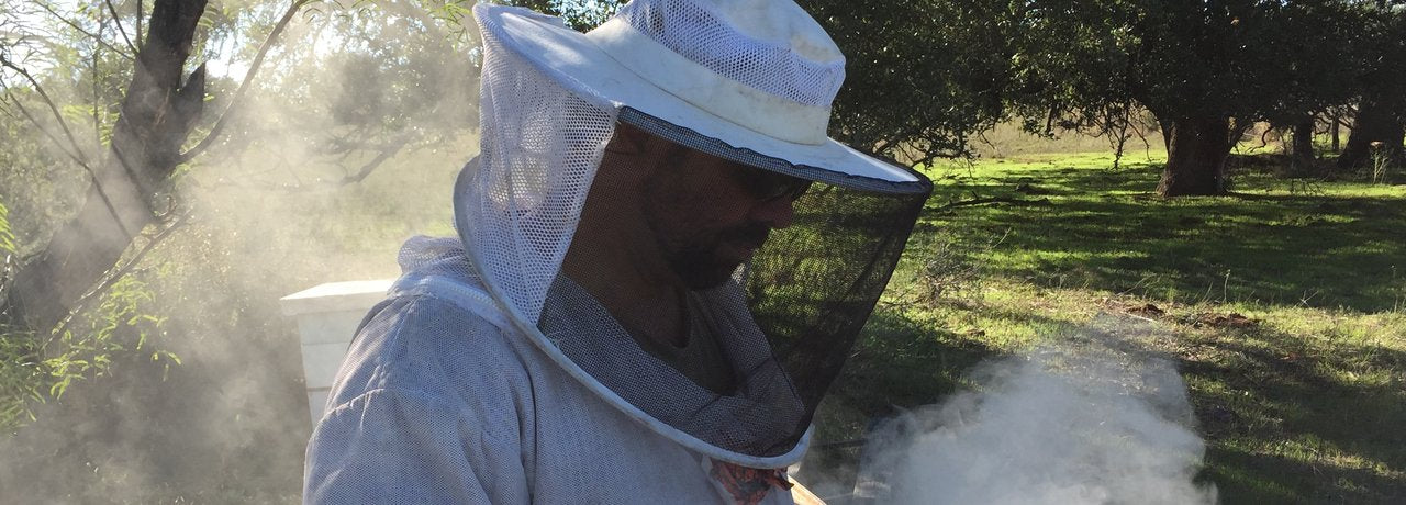 Brent Working With The Bees