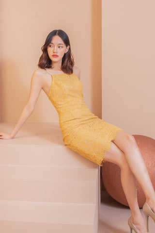 Darla Lace Dress Mustard