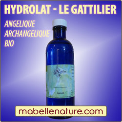 ANGELIQUE ARCHANGELIQUE bio (Hydrolat) - Ma Belle Nature