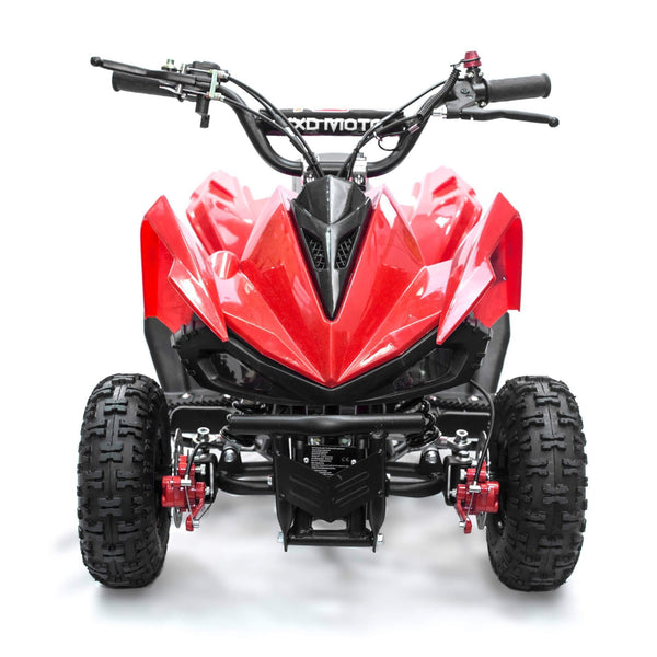 SWEGWAY Mini Dirt Track Quad Bike
