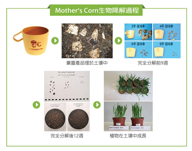 Mother's Corn生物降解過程